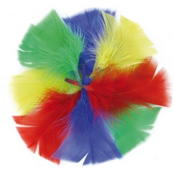 feathers - bright colors - 6 to 10 cm - 270 pieces