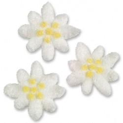20 edelweiss in sugar - ø 36 mm