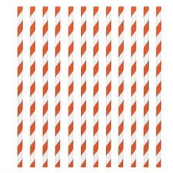 24 pailles en papier - rayure orange