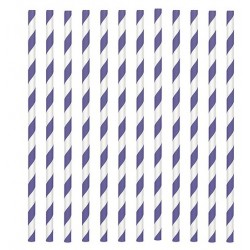 24 paper straws - purple stripe