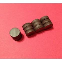 Magnets (12 pièces)