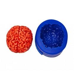 Grand cerveau