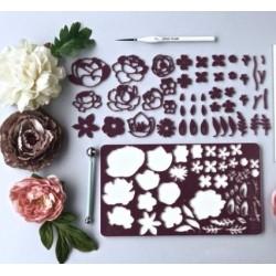 Set embosseur botanique - Sweet Stamp Amycakes