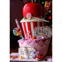 cours / workshop / cake design