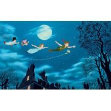 thème Peter Pan